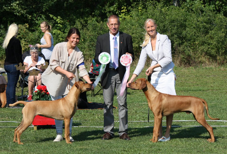 D-Arby Best Male Pup, Best of Breed and BISS and Haley Best Bitch Puppy and Best of Opposite--8 months old
