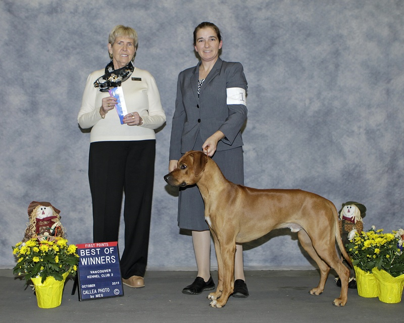 LEON at Vancouver Kennel Club-Oct 30, 2011- BOW